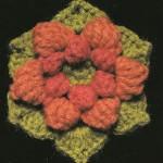 Hexagonal Crochet Block