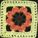 Crochet Square with Flower Inside