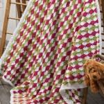 Tri-Colored Fan Crochet Blanket Pattern