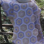 Hexagonal Granny Stitch Blanket