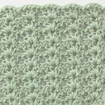 Free Crochet Stitch Shell Pattern