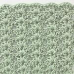 Free Crochet Stitch Shell Pattern