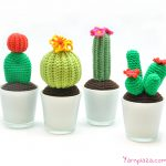 4 Free Crochet Cactus Patterns