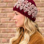 Granny Stitch Hat Bulky free crochet