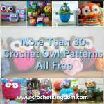 More Than 30 Crochet Owl Patterns All Free https://www.crochetkingdom.com/