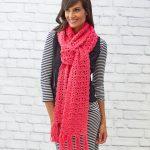 Cosmo Scarf Free Crochet Pattern