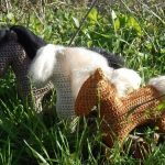 Icelandic horse Ragdoll Free Crochet Toy Pattern
