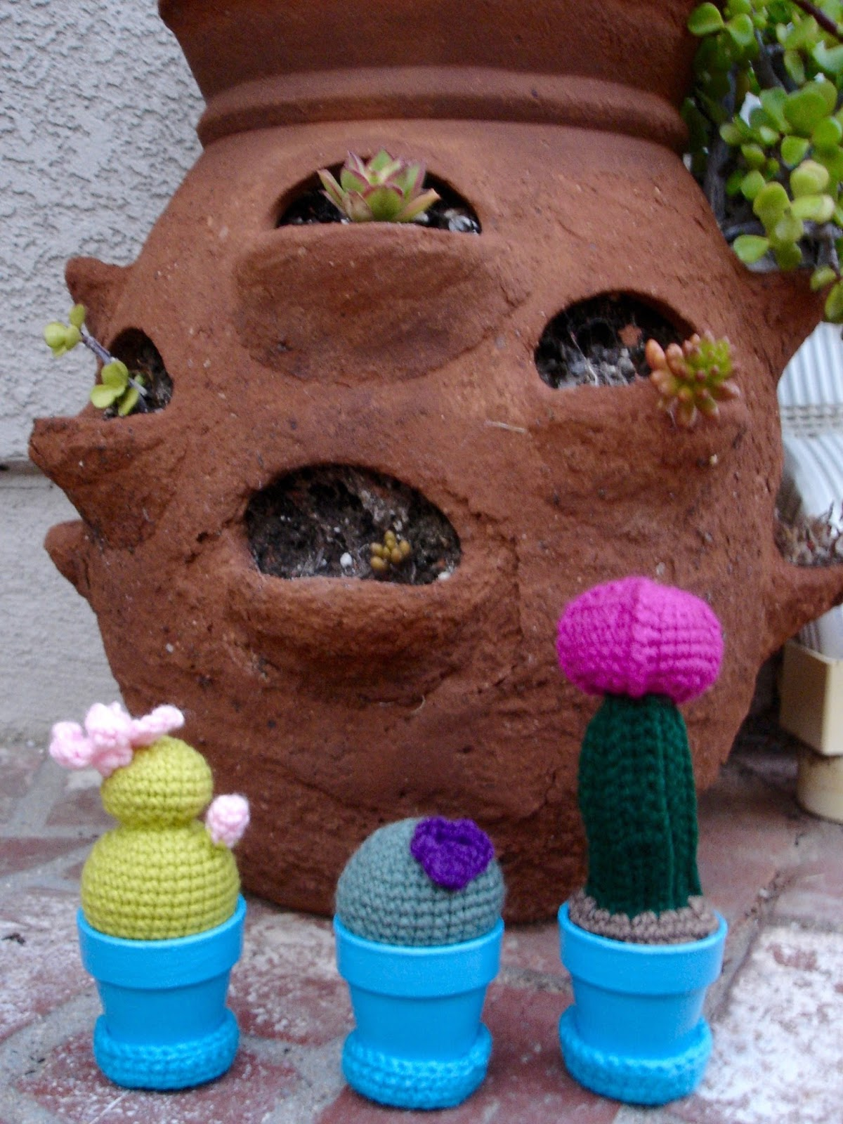 Mini Crocheted Cactus Garden Free Pattern