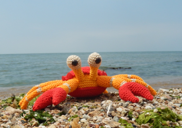 The Little Crab Coconut Free Amigurumi Pattern ⋆ Crochet