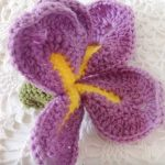 Free Video Tutorial for a Dutch Iris Orchid Crochet Flower