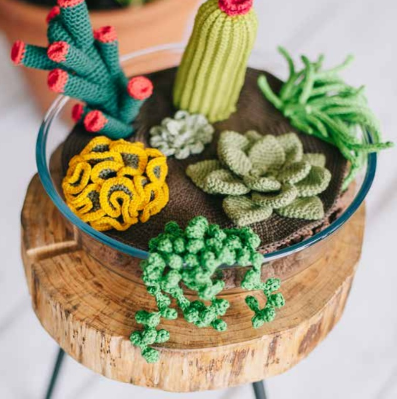 Free Crochet Pattern for Succulents Plants